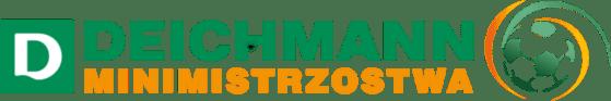 logo_dmme2016